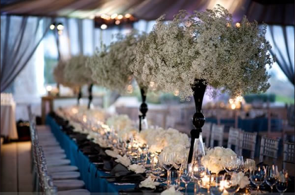 Wedding Blog Comeback: Babys Breath