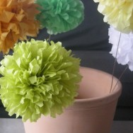 DIY Friday: Poms