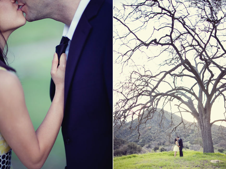 Wedding Blog Engaged: Under a Tree