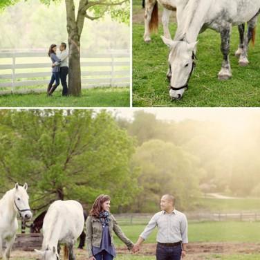 Equestrian Engagement
