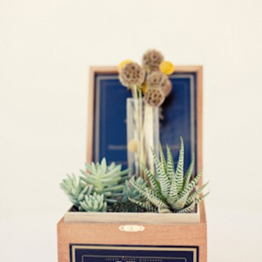 Cigar Box Centerpieces