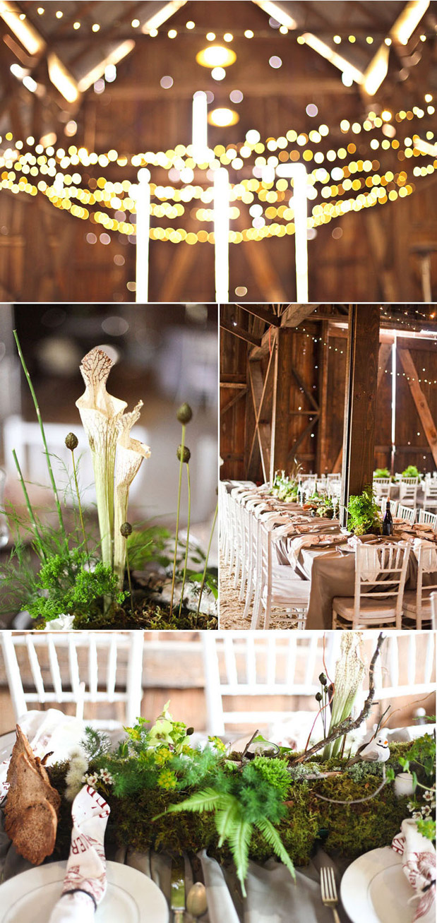 moss fern orchid rustic centerpieces
