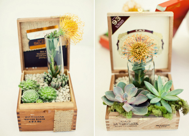 cigar_box_centerpiece_succulents_diy_wedding