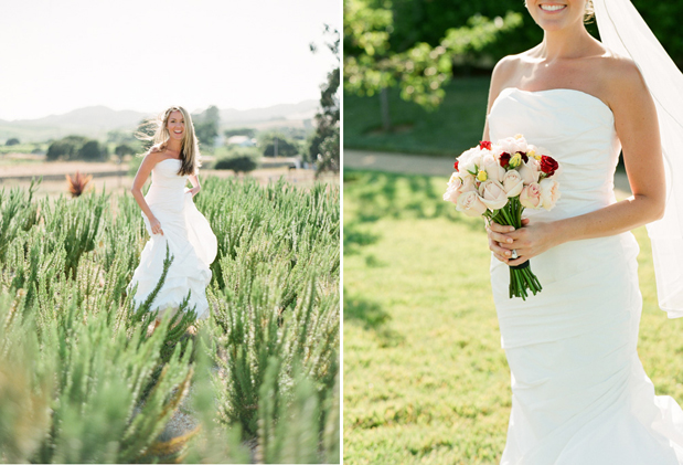 Wedding Blog Carneros Inn Wedding by Paul Von Rieter