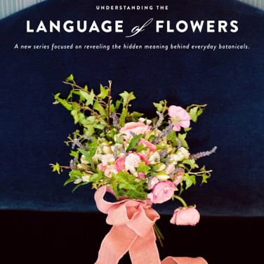 The Langage of Flowers