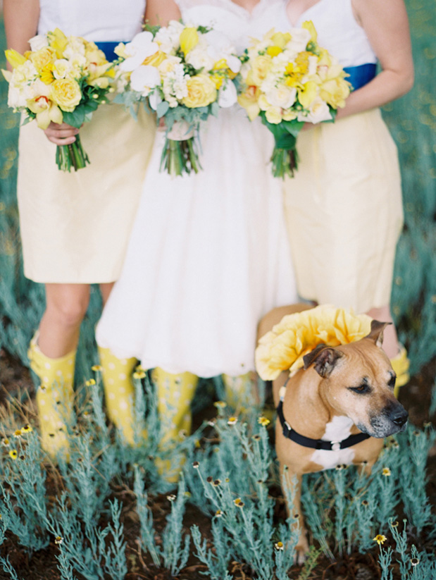 Wedding Blog Sunrise Springs Wedding by Clary Pfeiffer