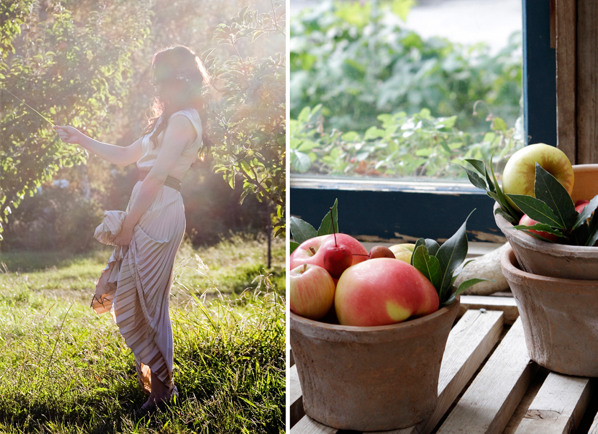 gather_west_photography_apple_orchard_8