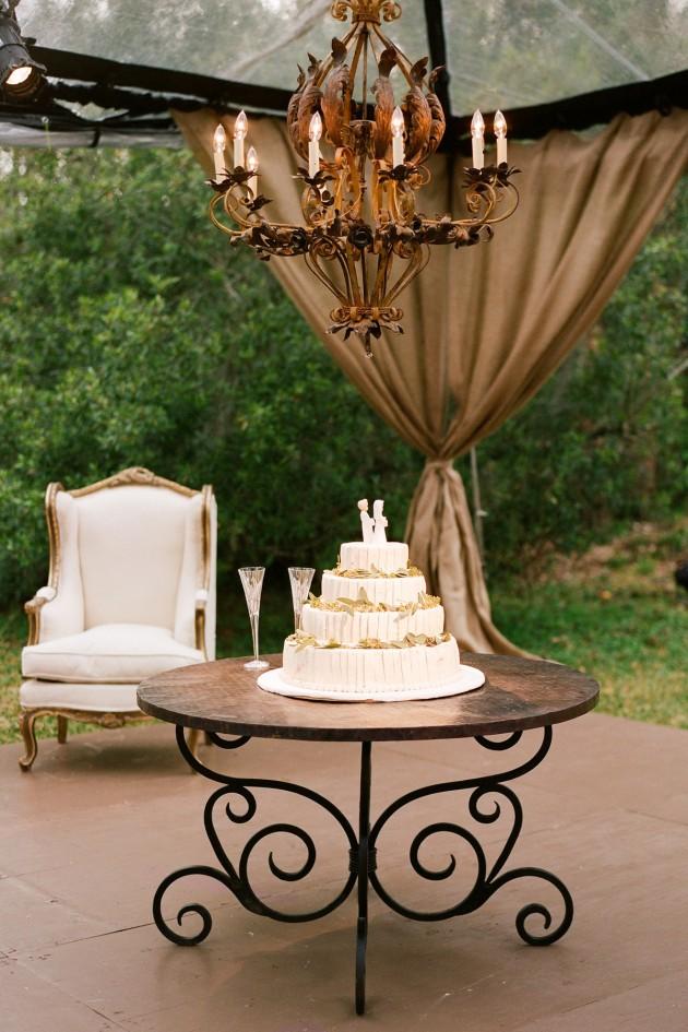 new_orleans_louisana_bayou_purple_wedding_19