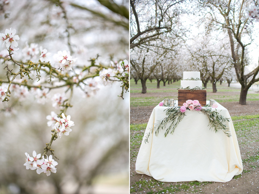 spring_wedding_pink_cherry_blossoms_10