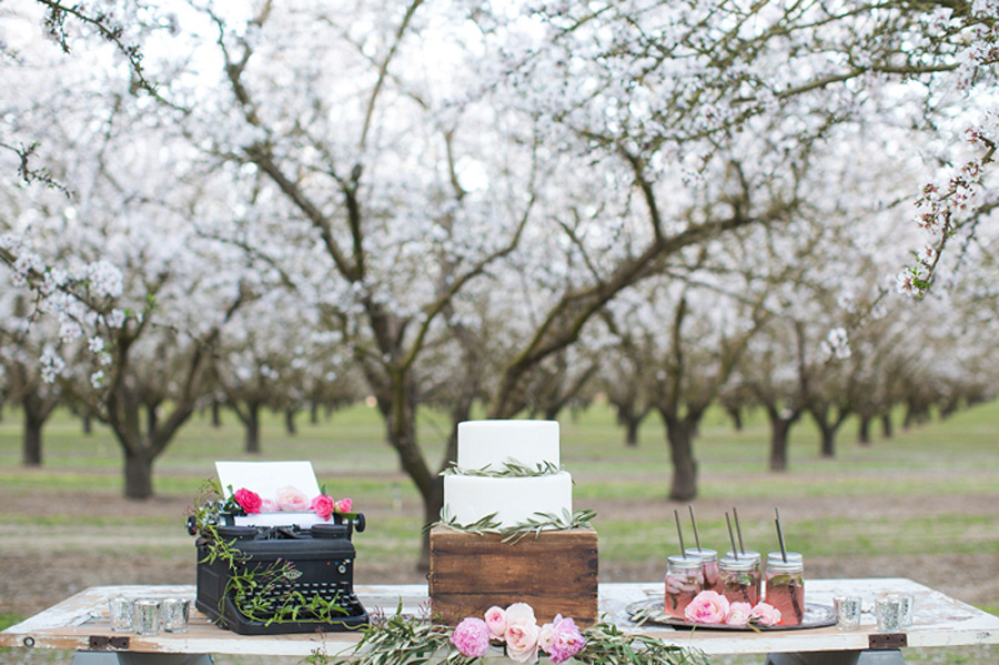 spring_wedding_pink_cherry_blossoms_3