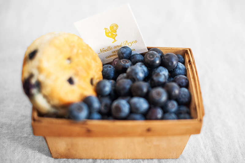 french_country_blueberry_yellow_wedding_9