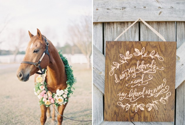Wedding Blog Horses and Poppies