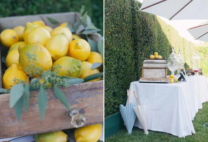 blue_yellow_lemon_summer_wedding_11