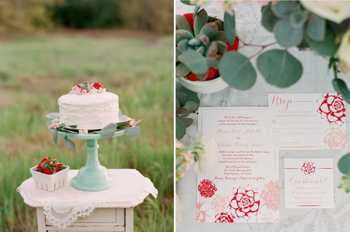 Wedding Blog Strawberries and Succulents
