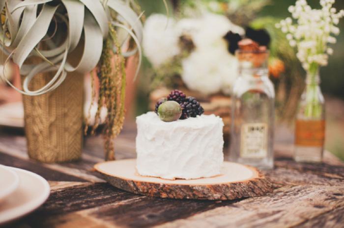 southwest_wedding_11a