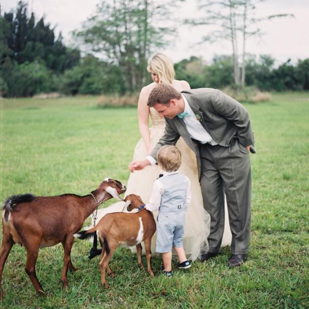 farm-to-table-rustic-wedding-12