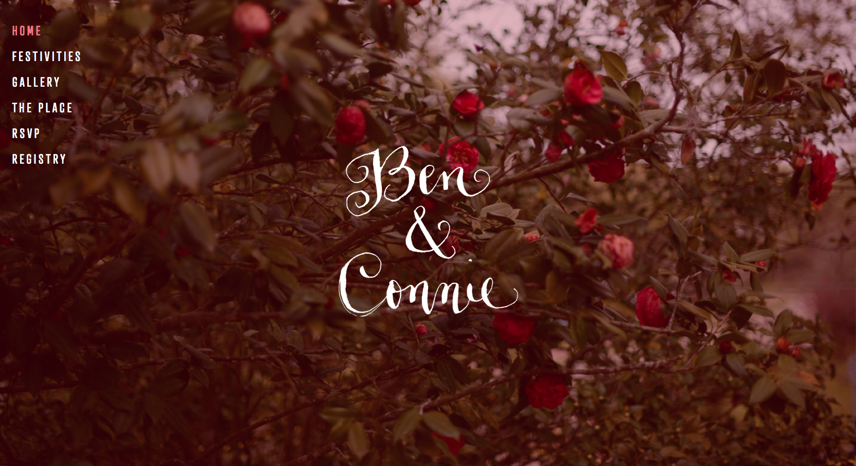 squarespace-wedding-website-3