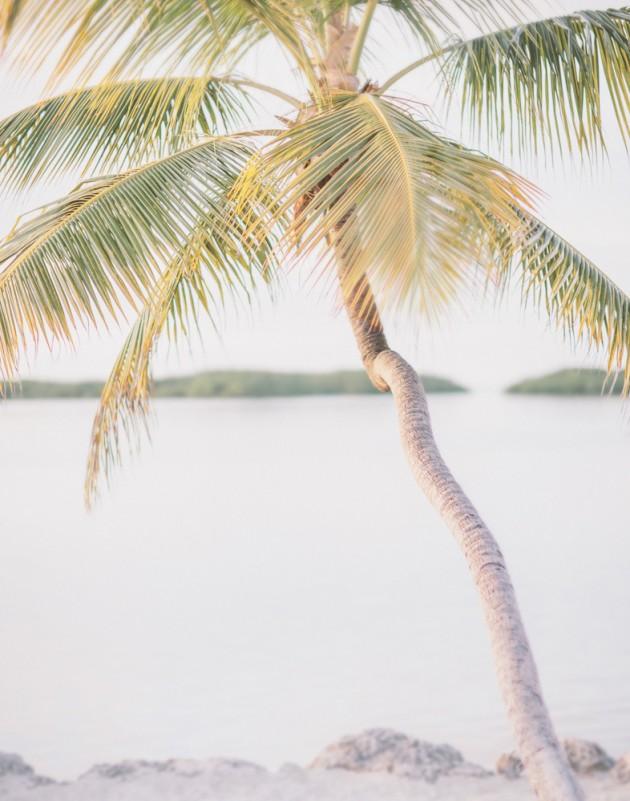 florida-keys-resort-island-beach-tropical-wedding-18