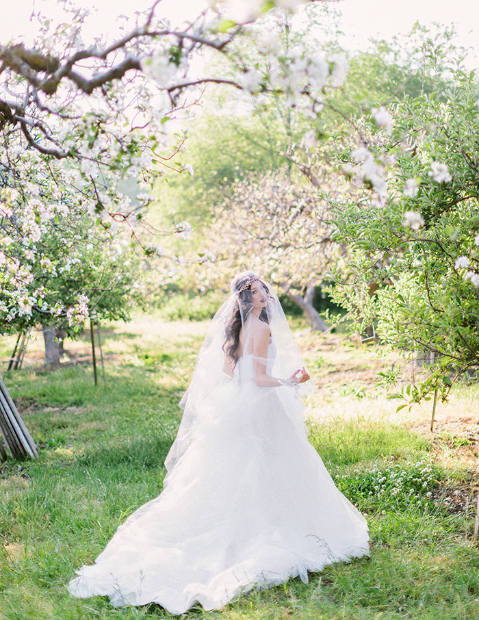 Wedding Blog Wisteria Bridal and Twigs & Honey Bridal Shoot