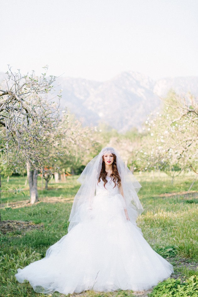 spring-bridal-shoot-twigs-and-honey-5