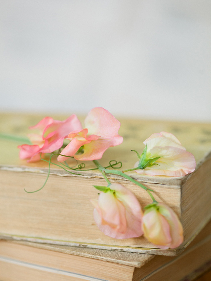 spring-sweet-pea-pink-wedding-ideas-8
