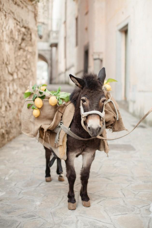 italy-lemon-inspired-ravello-wedding-3