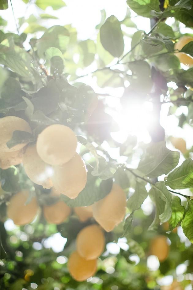 italy-lemon-inspired-ravello-wedding-4