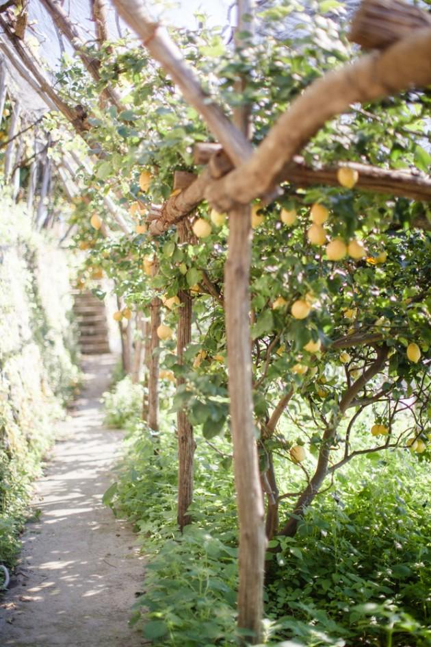 italy-lemon-inspired-ravello-wedding-8