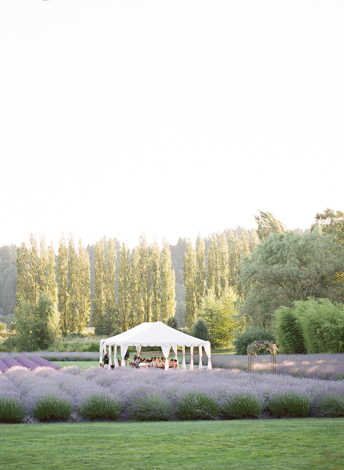 woodinville-lavender-farm-seattle-purple-wedding-19