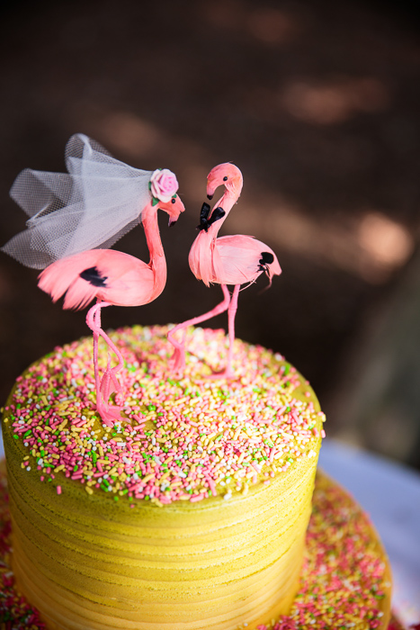 florida-pink-green-flamingo-wedding-21