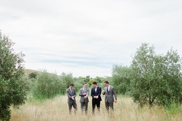 black-barn-vineyard-new-zealand-wedding-11