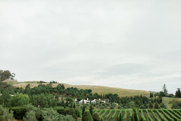 black-barn-vineyard-new-zealand-wedding-16