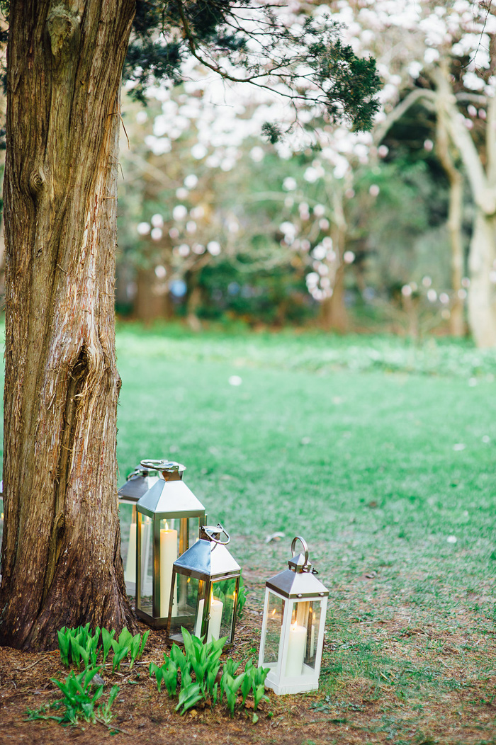 spring-wedding-at-Mass-Audubon-Habitat-Wildlife-Sanctuary-Belmont-MA26