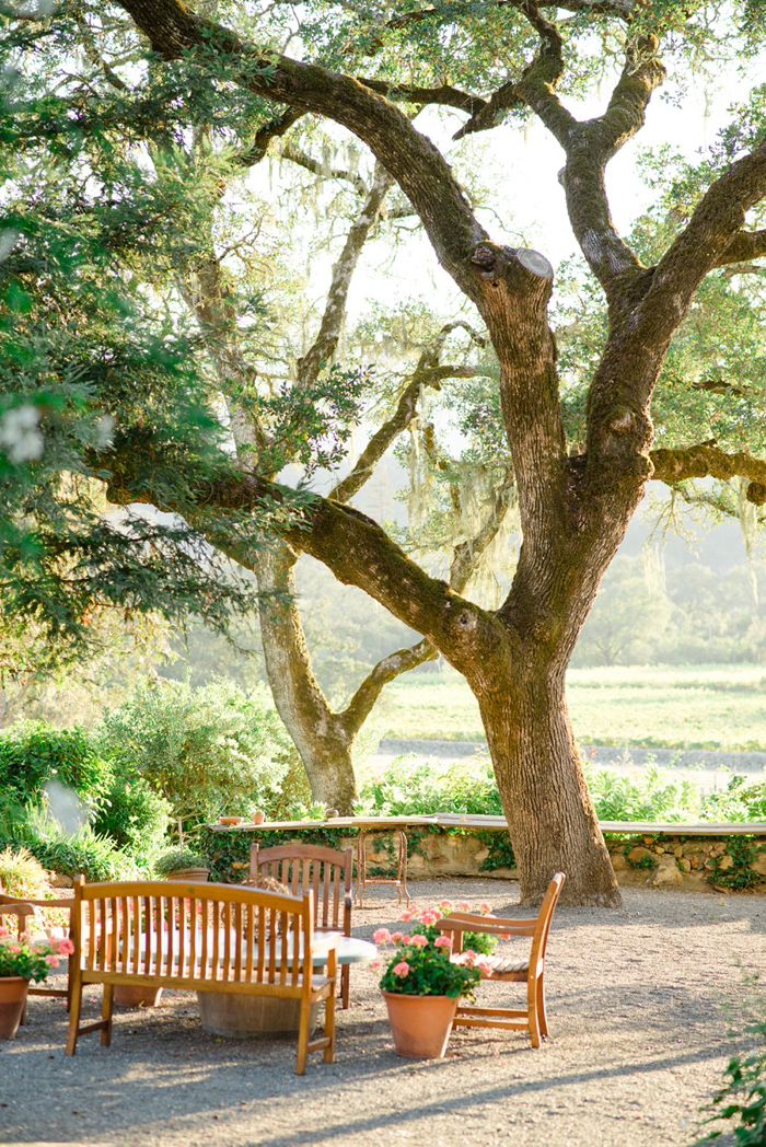 beltrane-ranch-sonoma-elopement-10