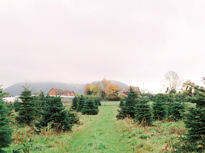 christmas-proposal-mrs-box-vintage-french-velvet-ring-box-engagement-gift-22