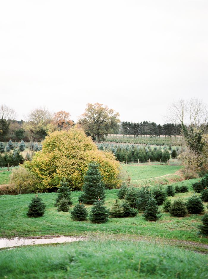 christmas-proposal-mrs-box-vintage-french-velvet-ring-box-engagement-gift-5