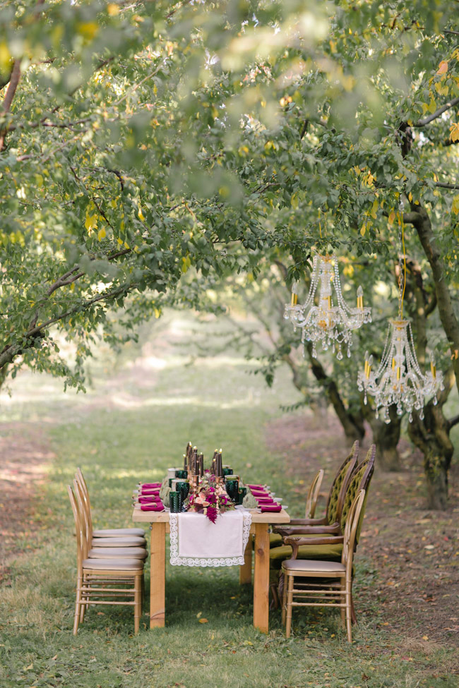 niagara-wine-country-ontario-canada-holiday-wedding-3