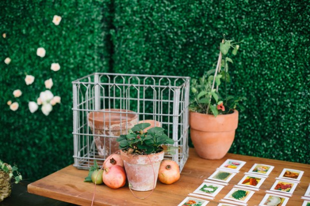 amorology-Rancho-Valencia-rachel-roy-garden-produce-wedding-13