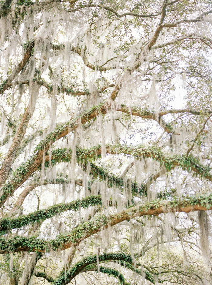 southern-culinary-bridal-inspiration-decor0004