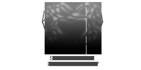Sarina Love Photography