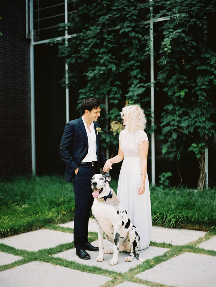 contemporary-wedding-dog-decor-ideas00