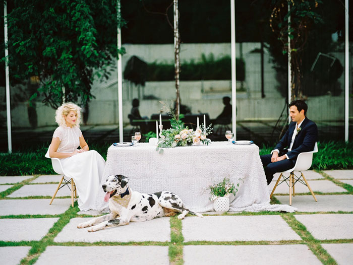 contemporary-wedding-dog-decor-ideas01