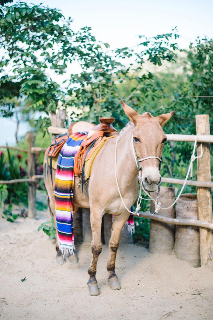 verana-destination-wedding-tropical-jungle-inspiration-27