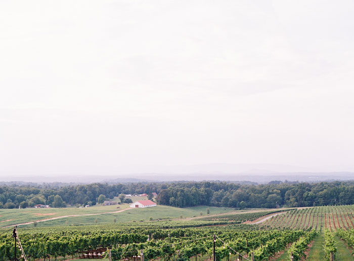 north-carolina-vineyard-wedding-ideas-38