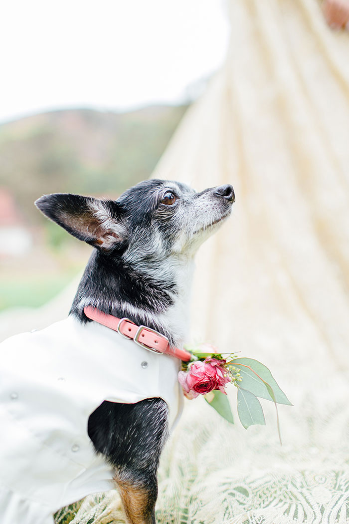 san-francisco-outdoor-fall-red-floral-wedding-inspiration-29