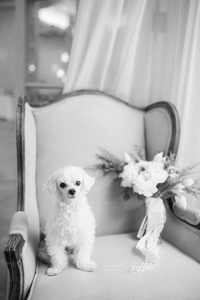 westgate-hotel-fresh-parisian-elegance-wedding-inspiration08