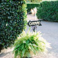 Liz and Andrew's Wedding at Cornerstone Sonoma