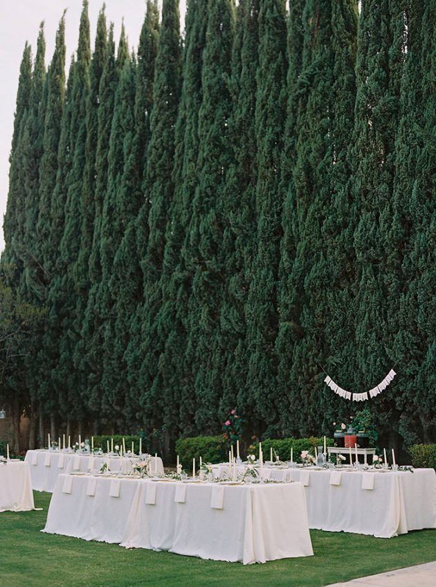 italian-theme-engagement-party-outdoor-cypress-tree-inspiration11