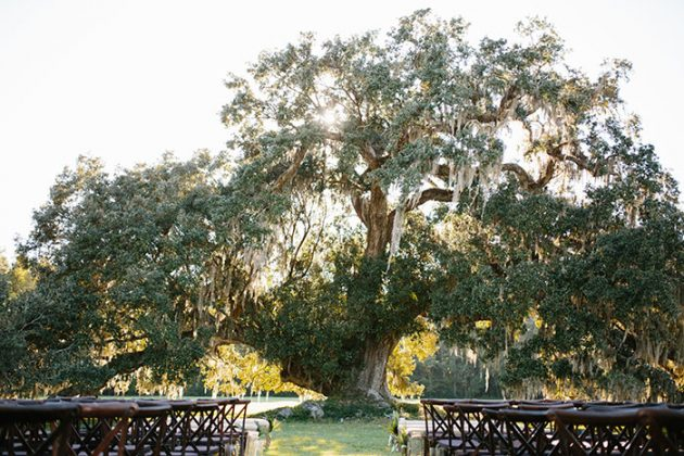 runnymede-plantation-charleston-wedding-boho-glam-inspiration41