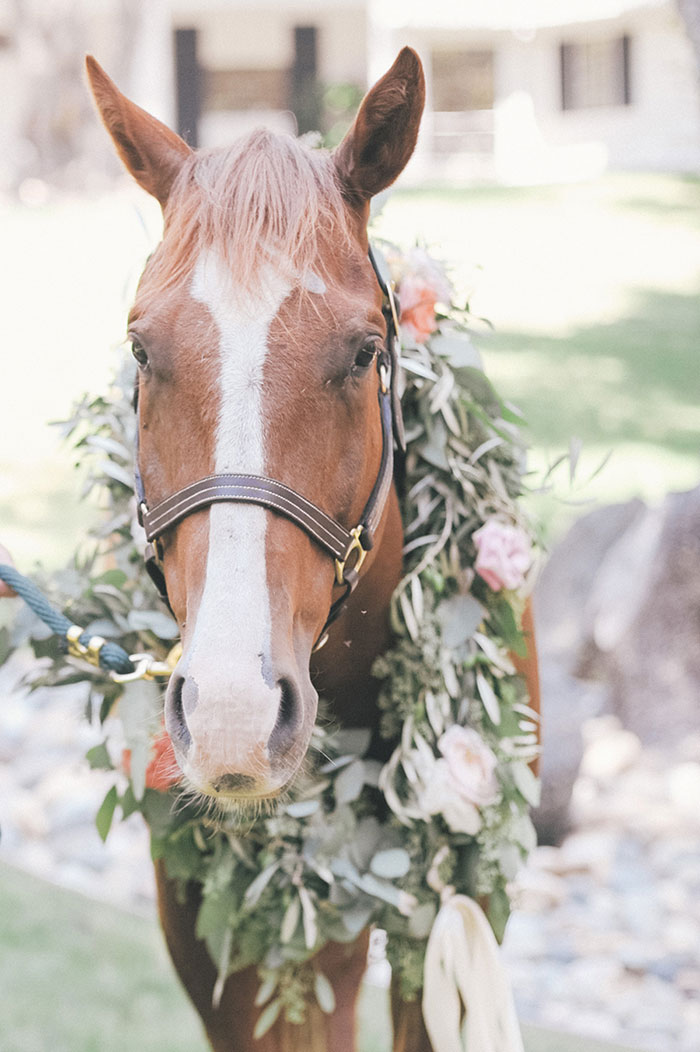 Thomas-Fogarty-Winery-horse-equine-derby-inpsired-wedding-inspiration02